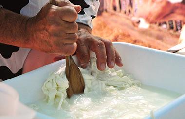 L'arte degli ainuzzi - Fattoria Giambrone - Cammarata - Agrigento - Sicilia